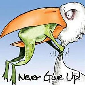 Click image for larger version.  Name:Frog-Never-Give-Up-Frog.jpg Views:14 Size:19.8 KB ID:21470