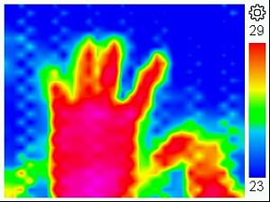 Click image for larger version.  Name:ThermalCamera.jpg Views:15 Size:27.2 KB ID:24307